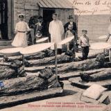 Анапа. Грунтовые грязевые ванны. Мужское отделение в лечебнице Доктора Будзинского, до 1917 года