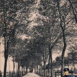 Ейск. Воронцовский проспект, до 1917 года