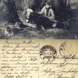 Екатеринодар. Шестиклассное городское училище, 1914 год