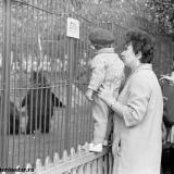 Городской парк им. М. Горького, 1967 год, зооуголок. Мишка и Машка