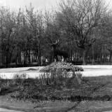 Краснодар. Центральный фонтан в парке Горького.