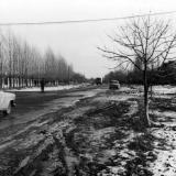Академика Трубилина улица - перекресток c Калинина