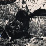 Краснодар. Парк им. М. Горького. У водопада, 1956 год
