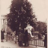 Краснодар. Первомайский сквер. 1956 год.