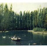 Краснодар. Пруд в Парке культуры и отдыха им. Горького, около 1960 года