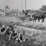 Краснодар. Карасунский канал. 1950 год.