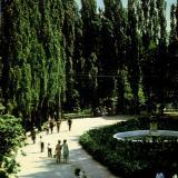 Краснодар. Уголок парка культуры им. Горького
