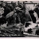 Привет из Краснодара. №4