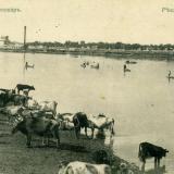 Екатеринодар. №2. Река Кубань
