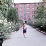 Краснодар. Двор дома по ул. Мира 44, 1971 год