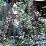 Краснодар. Двор по ул. Мира, 44, 1971 год