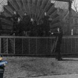 Краснодар. Эстрадная площадка в Горпарке, 1958 год