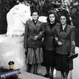 ���������. ��������� ����, �������� 1950-�