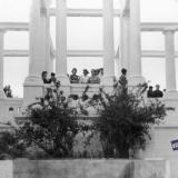 Краснодар. Горпарк. Колоннада, 1950-е годы.