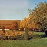"Краснодар. Кинотеатр ""Аврора"", 1977 год."
