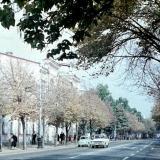 Краснодар. Красная, перекресток с Советской, вид на север, 1971 год