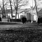 Краснодар. КСХПВ. Животноводческий сектор. Коровник. 1956 год