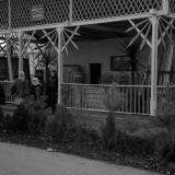 Краснодар. КСХПВ. Павильон управления лесного хозяйства. 1956 год