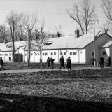 Краснодар. КСХПВ. Животноводческий сектор. Конюшня. 1956 год.