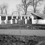 Краснодар. КСХПВ. Животноводческий сектор. Летний лагерь для свиней. 1956 год