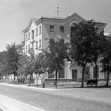 Краснодар. На улице Карла Либкнехта у дома № 87.