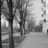 Краснодар. На улице Северной у дома № 263