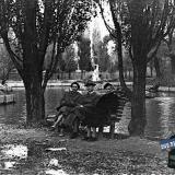 Краснодар. Осенним днём в городском саду.