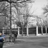 Краснодар. Перекрёсток улиц Тельмана и Шаумяна