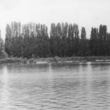 Краснодар. Старая Кубань. Май 1967 года.