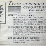 Краснодар. Трест зеленого строительства, 1940 год.