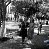 Краснодар. На улице Коммунаров. 1952 год.