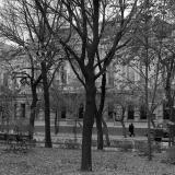 Краснодар. Улица Ворошилова. 8 ноября 1964 года