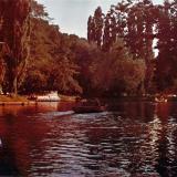 Краснодар. В Парке им. М. Горького, 1970-е годы