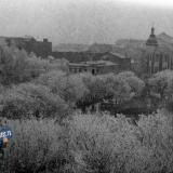 Краснодар. Вид на Первомайский сквер, середина 1950-х.