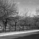 Краснодар. Вид на Первомайский сквер и улицу Ленина от улицы Красной.