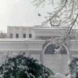 Краснодар. Зимним днём в Первомайском сквере