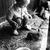 Краснодар. Знакомство с обитателями сарая, 1969 год