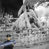 Краснодар. ул. Атарбекова 54. Южная зима, 1974 год