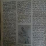 "Журнал ""Огонёк"" 1955 год №39 сентябрь"
