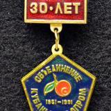 Значки.  30 лет. Объединение Кубаньплодопром. 1961-1991.