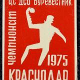 Значки. Чемпионат ЦС ДСО Буревестник по ганболу. Краснодар. 1975 год