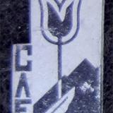 Значки. ЗИП. Слет. Весна. 1968 год