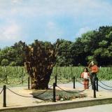 """Новороссийск. Памятник """"Взрыв"""", 1984 год"""
