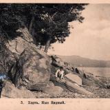Хоста. Мыс Видный, до 1917 года