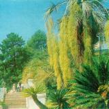Сочи. Дендрарий. Аллея парка, 1980 год
