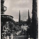 Сочи. Дендрарий. Лестница на верхнюю терассу. 1935 год