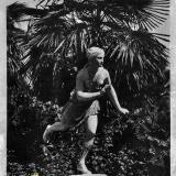 Сочи. Худяковский парк. Венера, 1934 год