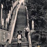 Сочи. Лестница около Удельной в Ермоловском парке, до 1917 года
