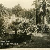 Сочи. Опытная станция, 1920-е годы