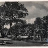 Сочи. Приморский парк, 1938 год